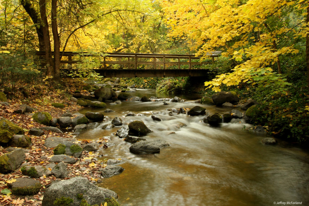 Lithia Park Trails